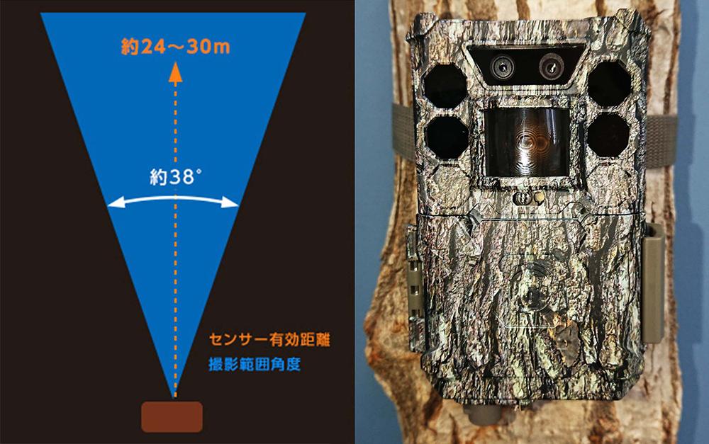 トロフィーカム 24MPノーグロウSC センサー有効範囲