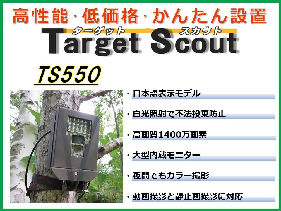 TS550 トップ絵
