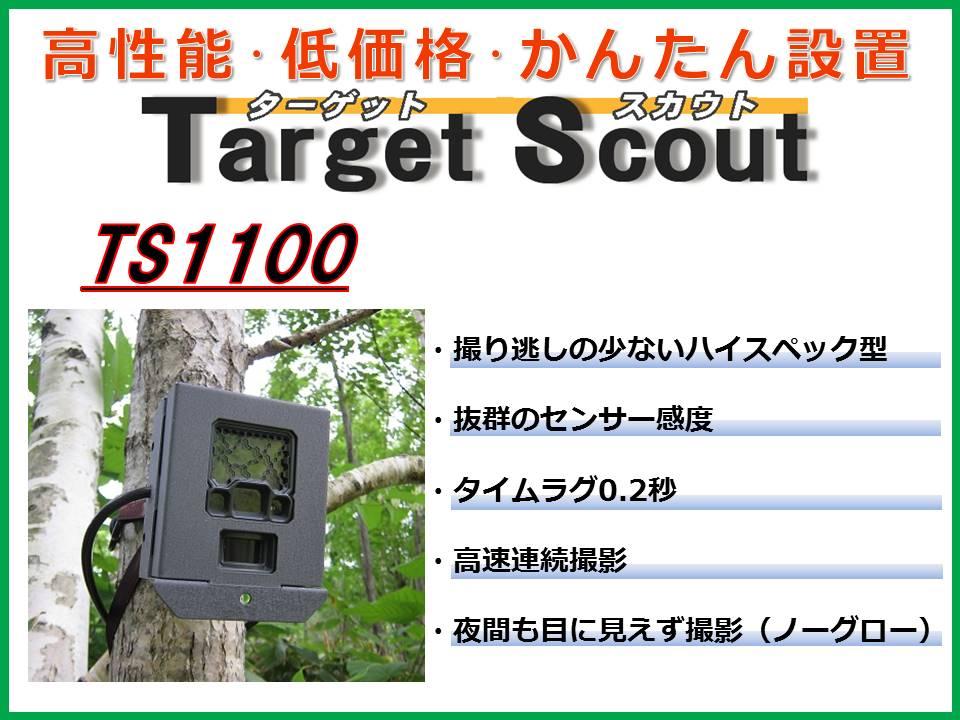 TS1100 トップ絵