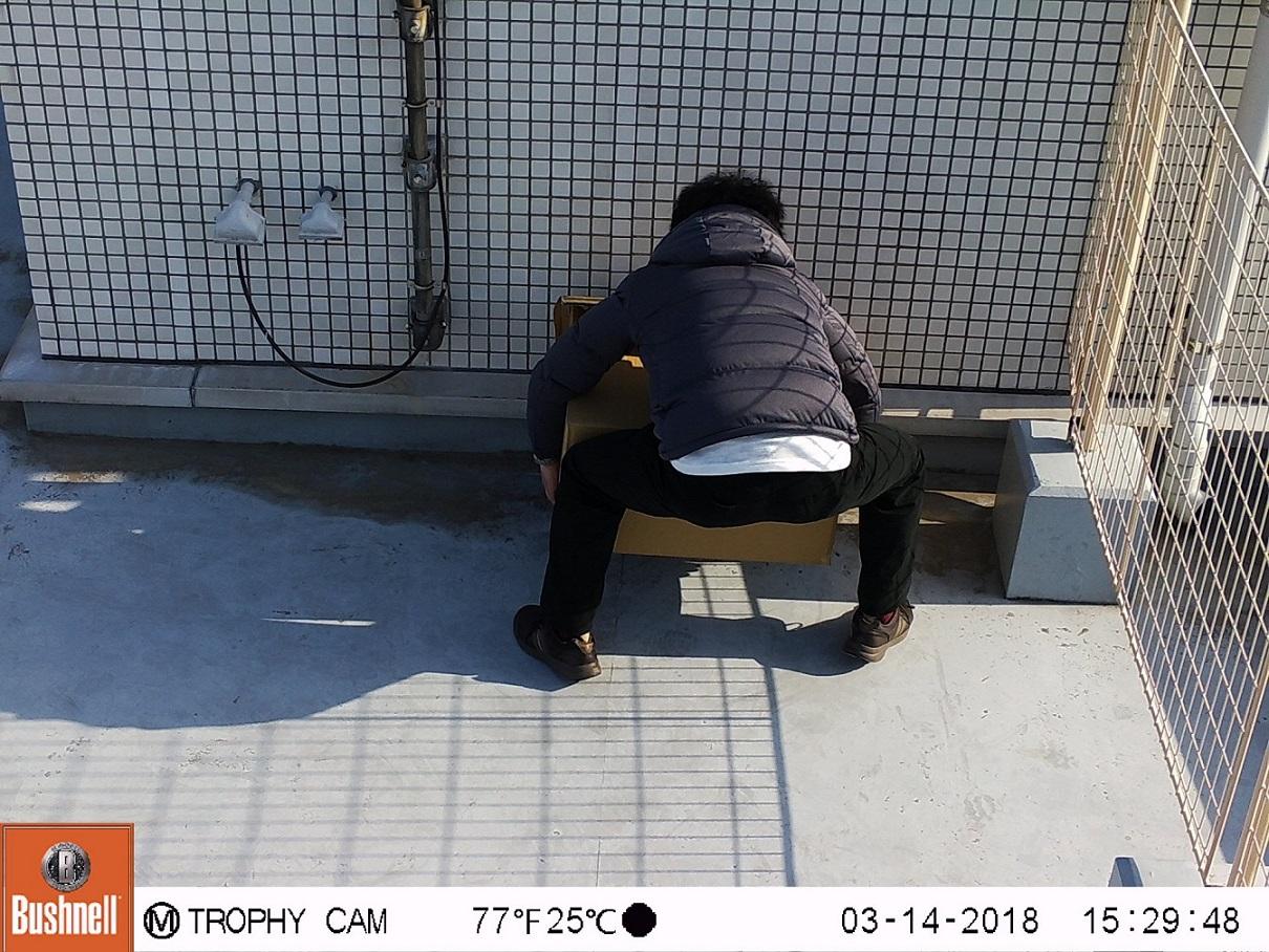 トロフィーカムXLT 30MPローグロウDC 撮影イメージ